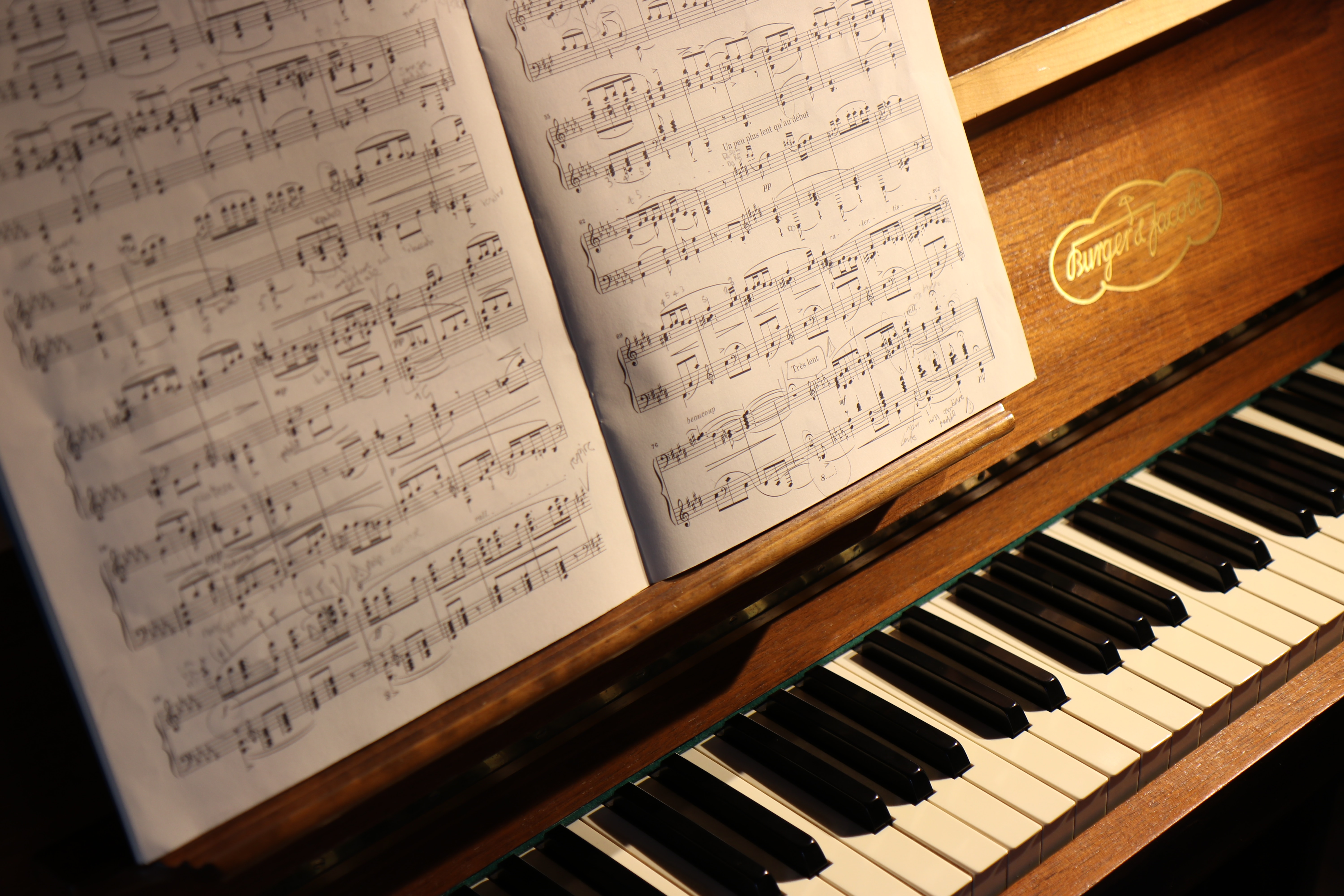 Lessons - Piano Lessons by Mary Phegley